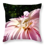 Master Gardener Pink Dahlia Flower Garden Art Prints Canvas Baslee Troutman Throw Pillow
