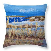 Matagorda Island Texas Throw Pillow