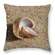 Matched Set Throw Pillow