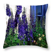 Matching Flowers And  Window Throw Pillow