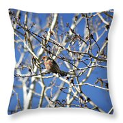 Mate In Waiting Throw Pillow