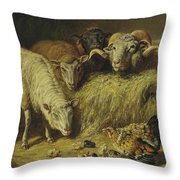 Maternal Solicitude By Arthur Fitzwilliam Tait Throw Pillow
