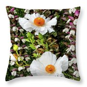Matilija Poppies Throw Pillow