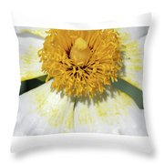 Matilija Poppy 2- Macro Throw Pillow
