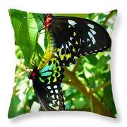 Mating Butterflies Throw Pillow