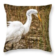 Mating Season - Everglades Throw Pillow