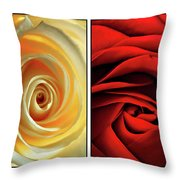Matters Of The Heart - Diptych Throw Pillow