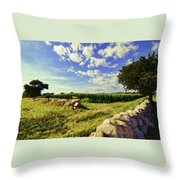 Matunuck Corn Fields Throw Pillow