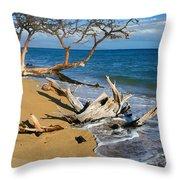 Maui Beach Dirftwood Fine Art Photography Print Throw Pillow