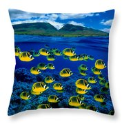 Maui Butterflyfish Throw Pillow by Dave Fleetham - Printscapes