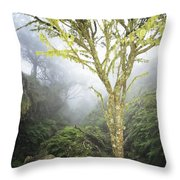 Maui Moss Tree Throw Pillow