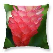 Maui Pink Ginger Throw Pillow