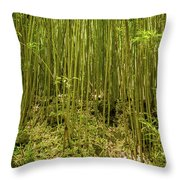 Maui's Thick Bamboo Throw Pillow
