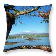 Mauna Kea Snow Throw Pillow