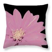 Mauve Flower Throw Pillow