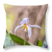 Mauve Trout Lily Throw Pillow