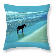 Maxwell On The Beach Throw Pillow