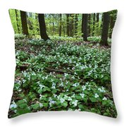 May 19-2017 At Sunnydale Park  Throw Pillow