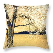 May 5 2010 Throw Pillow