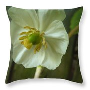 May Apple Blossom Throw Pillow
