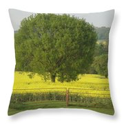 May Fields Throw Pillow