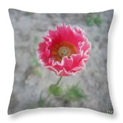 May   Flower  Throw Pillow