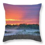 May Ground Fog Throw Pillow