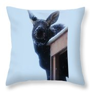 May I Come In Throw Pillow