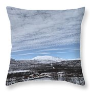 May In The Arctic Throw Pillow