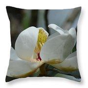 May Magnolia 2 Throw Pillow