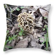 May Morel Mushroom Throw Pillow