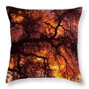 May One Sunset Throw Pillow