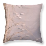 May You Always Have Shelter From The Cold Throw Pillow