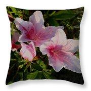 Maymont Flowers Throw Pillow