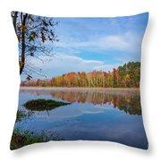 Mayor's Pond, Autumn, #1 Throw Pillow