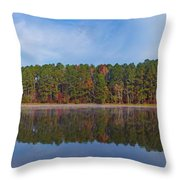 Mayor's Pond, Autumn, #3 Throw Pillow