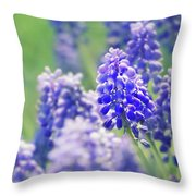 Maytime Throw Pillow