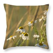 Mayweed Throw Pillow