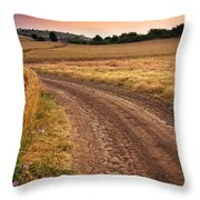 Mazzy Road Throw Pillow