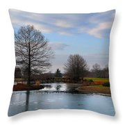 Mcbride Arboretum Winter Morning Throw Pillow