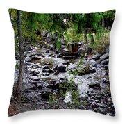 Mcdonald Lake Stream Throw Pillow