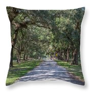 Mcleod Allee Throw Pillow