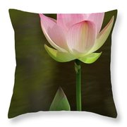 Pink Lotus And A Bud Throw Pillow