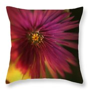 Me In You Throw Pillow