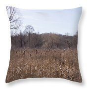 Meadow At Arnold Arboretum Throw Pillow