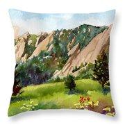 Meadow At Chautauqua Throw Pillow