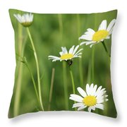 Meadow Detail White Wild Flowers Throw Pillow