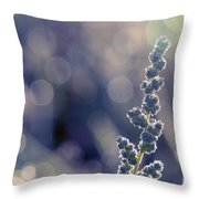 Meadow Flower  Throw Pillow