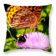 Meadow Fritillary On Thistle Blossom Throw Pillow