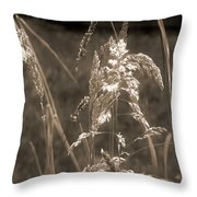 Meadow Grass In Sepia Throw Pillow